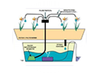 Типы гидропонных систем: от фитиля к аэропонике
