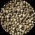 Все категории семян конопли